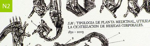 Diseño y operaciones morfológicas con tipografía.